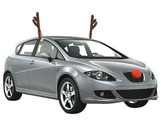 car reindeer antlers